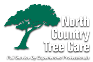 North Country Tree Care